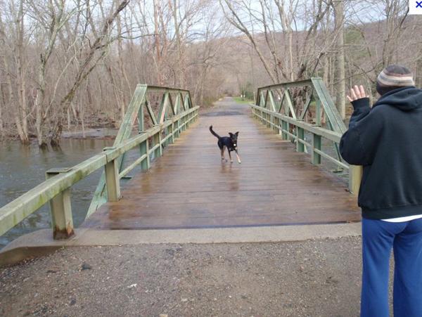 dotythe-original-doty-bridge